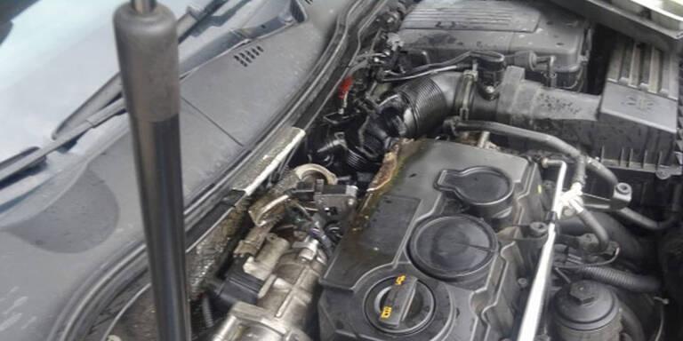 Passat-Fahrer löschte Motorbrand mit Bier
