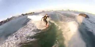 Wakeboarder reitet Welle mit Delphin