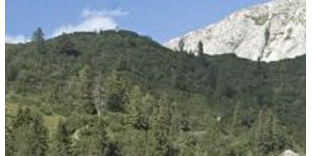 """Bergwälder vom """"Global Change"""" besonders betroffen"""