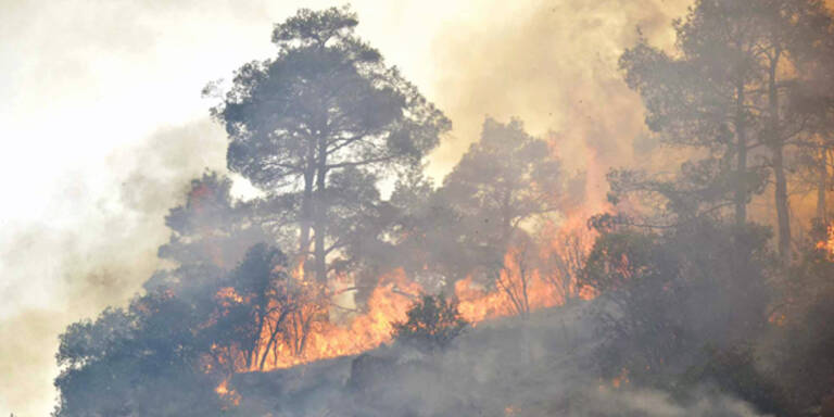 Waldbrand auf Zypern tobt weiter