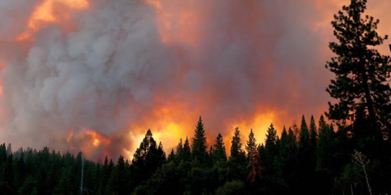 Windböen heizen Waldbrand in Kalifornien an