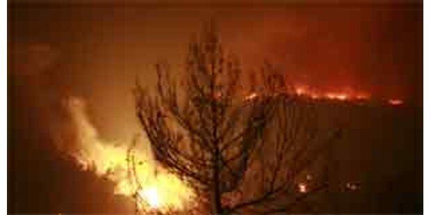 Waldbrände in Antalya teilsweise eingedämmt
