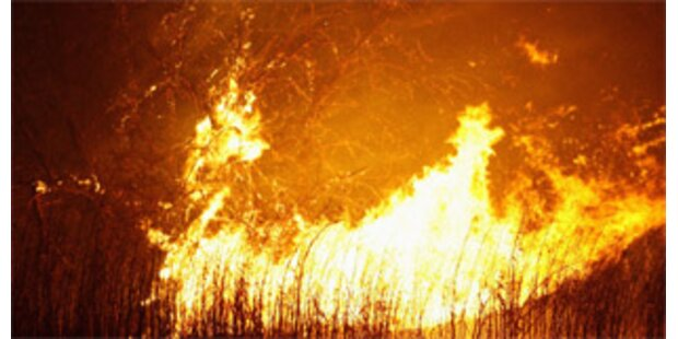 Fast vier Jahre Haft für Verursacher von Waldbrand