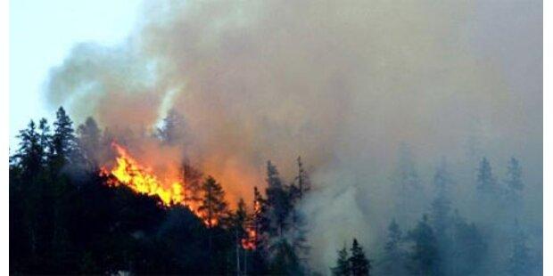 Heftiger Waldbrand tobte in Tirol