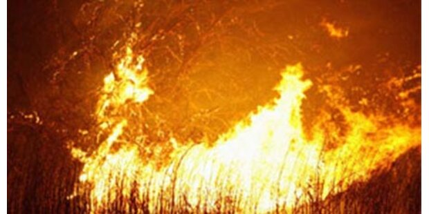 Toskana: Waldbrand bedroht Wohnhäuser