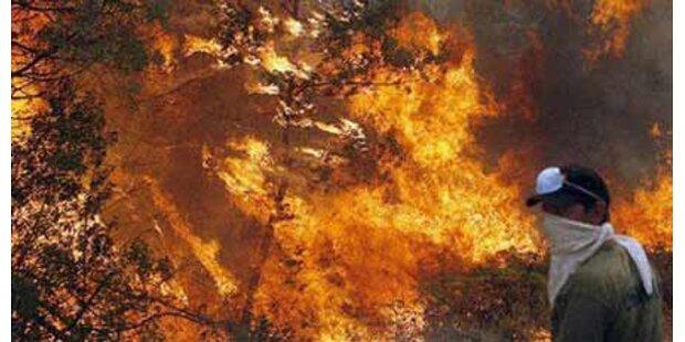 Schwere Feuer wüten in Italien
