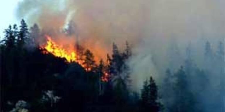 Waldbrand durch Funkenflug