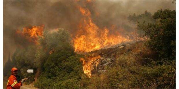 Dramatischer Waldbrand bedroht Athen