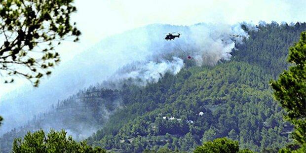 Waldbrand auf Ibiza: Urlauberhotel geräumt