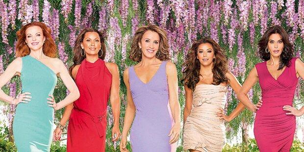 TV-Hausfrauen: Countdown zum Finale
