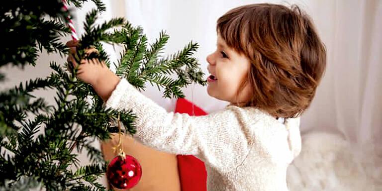 Aktion Weihnachtsherz: Tapfere Lily