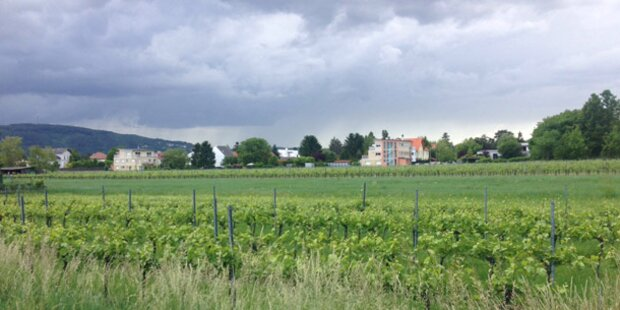Hagel in Wien: Schäden rund 1 Million Euro