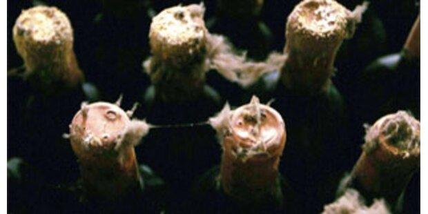 Londons Bürgermeister entdeckt geheimen Weinkeller