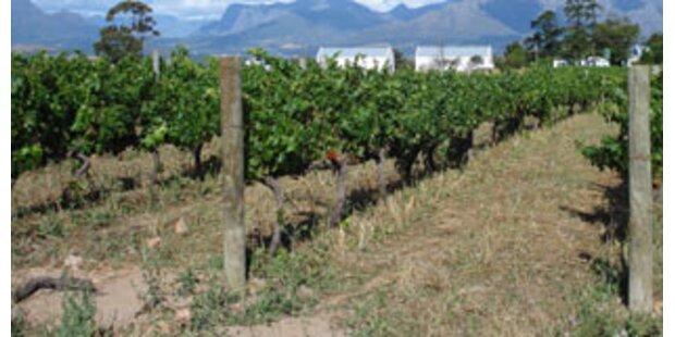Kroaten verlosen Weingut um Schulden zu tilgen