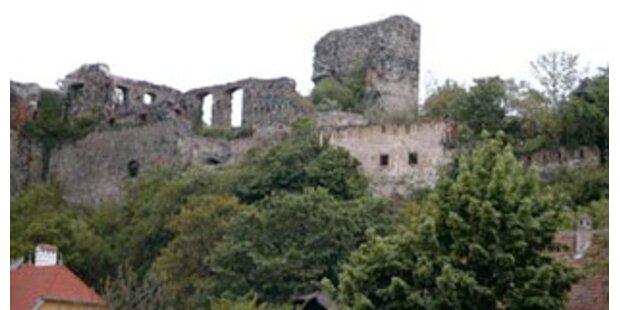 Ruine Weitenegg wird nun saniert