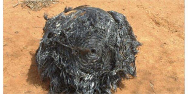 Australischer Farmer findet Weltraumschrott