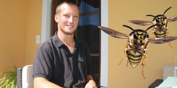 Ich überlebte 50 Wespenstiche