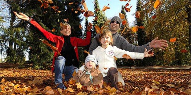 Herbstsonne sorgt für 20 Grad am Wochenende