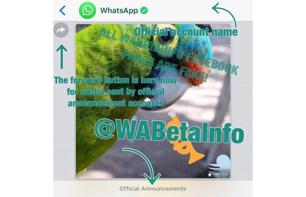 whatsapp-business-inl.jpg
