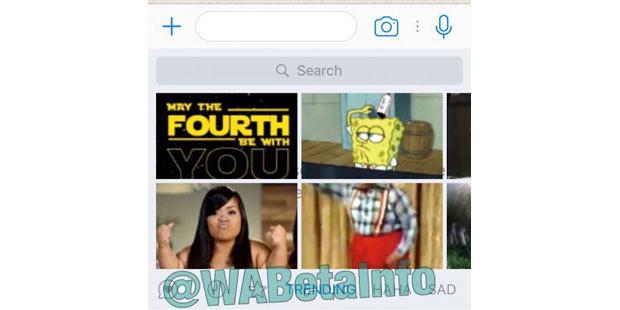 whatsapp-fun-gifs.jpg