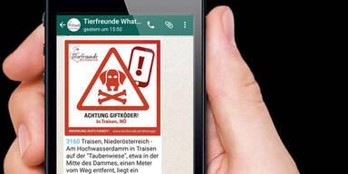 WhatsApp rettet jetzt Leben von Haustieren