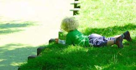 Im Garten lauern viele Gefahren