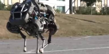 Boston Dynamics: Wildcat