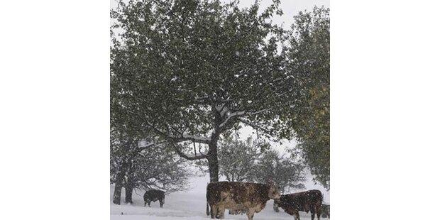 Vorarlberg versinkt im Schnee