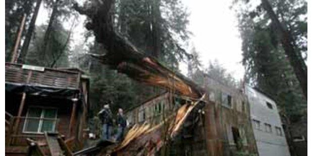 Zwei Tote bei schwerem Orkan in Kalifornien