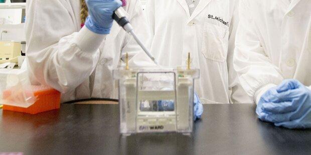 Forscher entwickeln Super-Festplatte