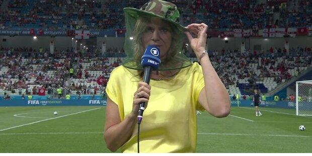 Mückeninvasion bei WM-Duell