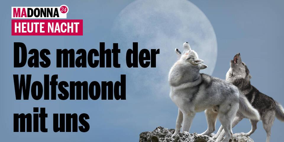 Das macht der Wolfsmond mit uns