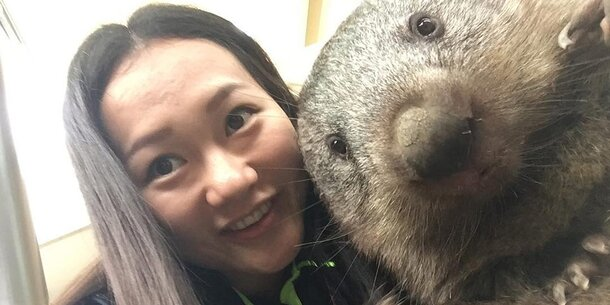 Wombat Selfie