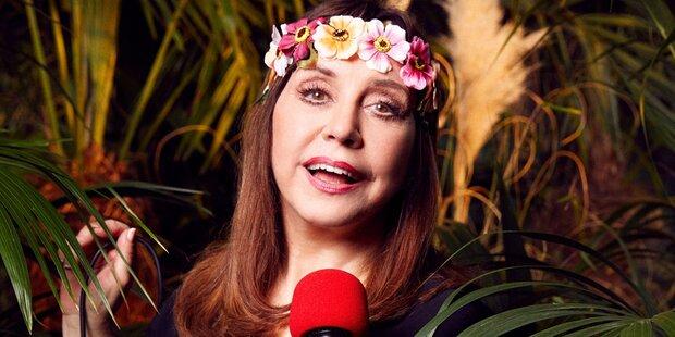 Dschungel: So viel kassiert Tina York