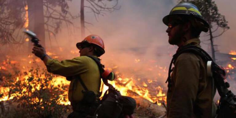 Yosemite-Waldbrand nach 2 Monaten gelöscht