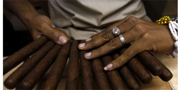 Kubanischer Tabak heuer gut wie selten zuvor