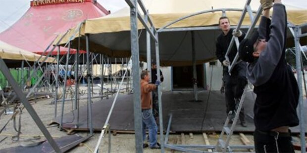 50 Tiere bei Feuer in Zirkus getötet