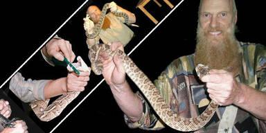 Gift-Viper tötet Experten bei Tier-Show